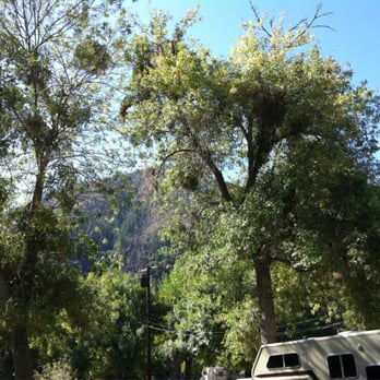 lytle creek dating site Please use flag this place to alert us about content that is inappropriate or needs immediate attention nothing you submit will be shared with other site visitors.