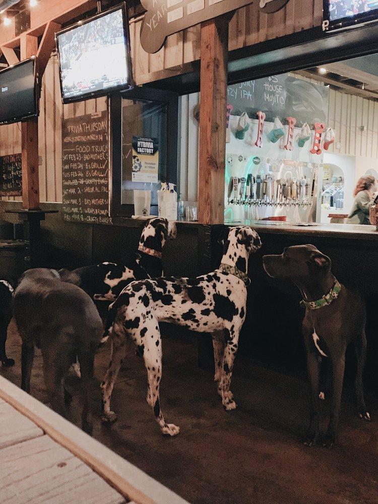 Lucky Dog Bark & Brew Lake Norman