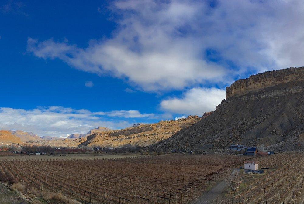 BookCliff Vineyards - Palisade: 670 39th Rd, Palisade, CO