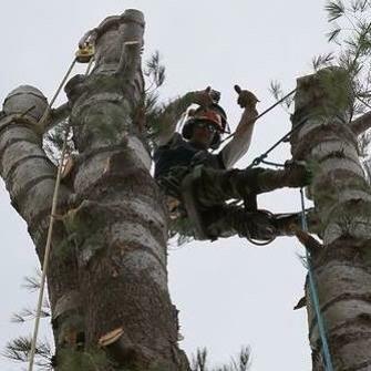 American Climbers: Hopkinton, MA