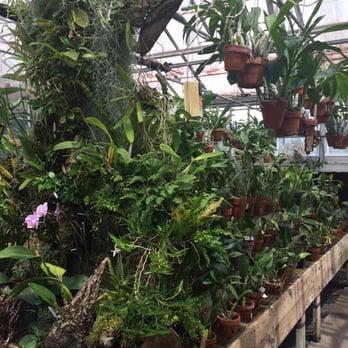 UNC Charlotte Botanical Gardens - 62 Photos & 20 Reviews - Botanical ...