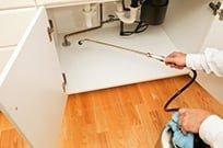 Knock'em Out Pest Control: 10860 Lakeshore Rd, Williamsburg, MI