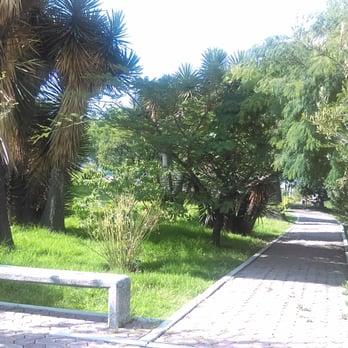 Jard n bot nico buap jardines bot nicos av san for Jardin botanico numero telefonico