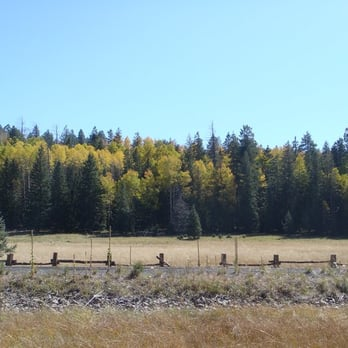 Photo Of Hannagan Meadow Lodge Alpine Az United States A Meets