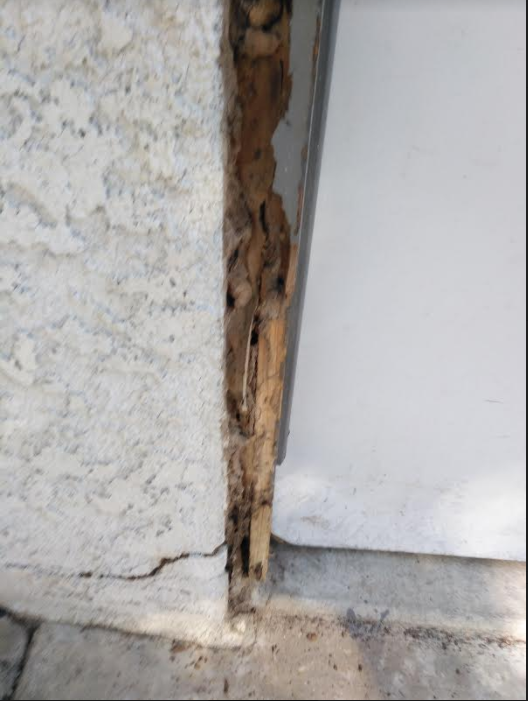 Reliable Termite Solutions: 2930 Geer Rd, Turlock, CA