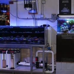 Aquatic Warehouse - 119 Photos & 248 Reviews - Aquarium Services