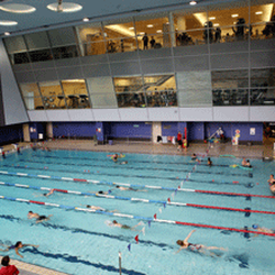 Swiss Cottage Leisure Centre 17 Reviews Recreation