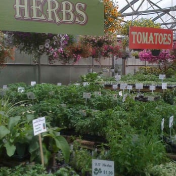 Timberline Gardens - CLOSED - 13 Photos & 22 Reviews - Nurseries ...