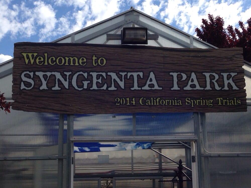 Syngenta Flowers   Nurseries U0026 Gardening   2280 Heckerpass Hwy, Gilroy, CA    Phone Number   Yelp