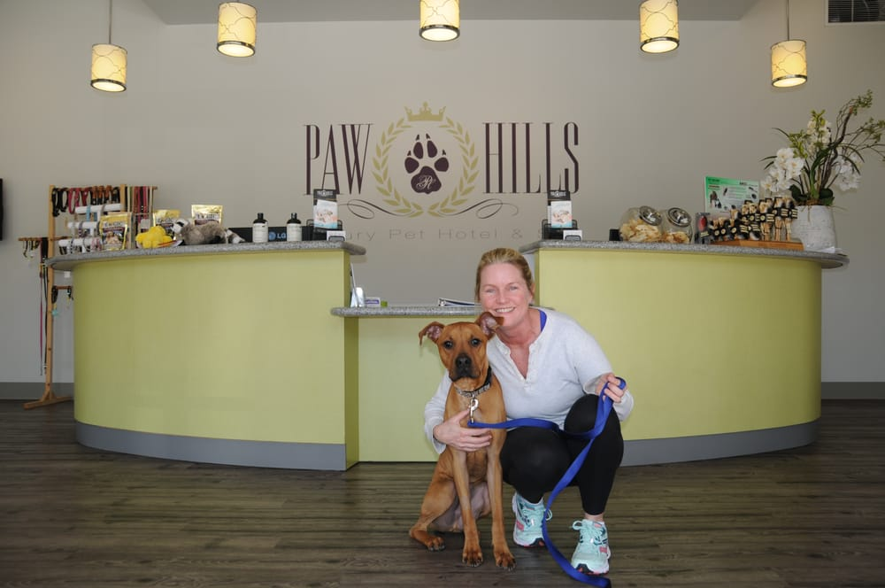 Paw Hills Luxury Pet Hotel & Spa: 30601 Canwood St, Agoura Hills, CA