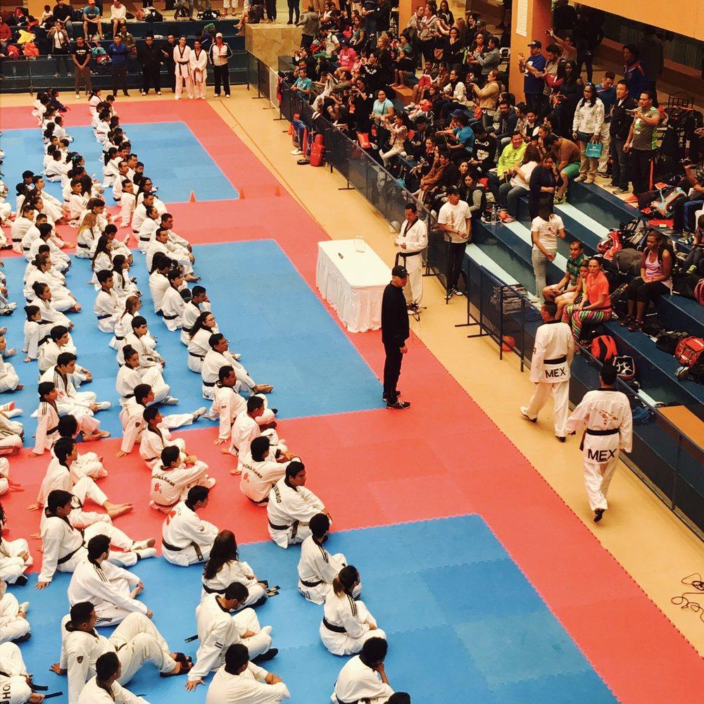 Revolution Taekwondo: 557 W Golf Rd, Arlington Heights, IL