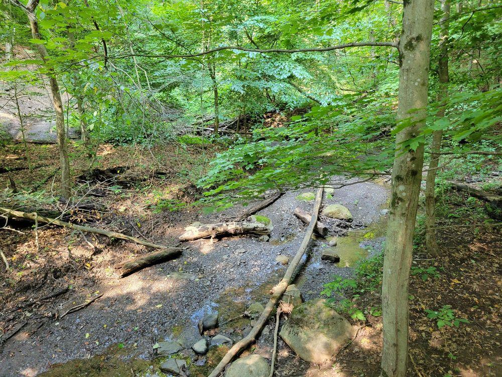 Hogback Ridge Preserve: 2656 Hogback Rd, Sunbury, OH