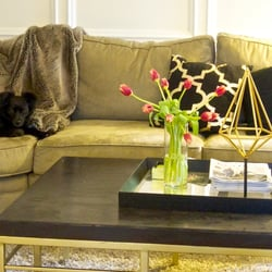 petra art interiors 19 photos home staging 3300 bee caves rd