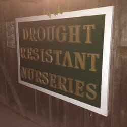 Photo Of Drought Resistant Nursery Monterey Ca United States Very Knowledgeable