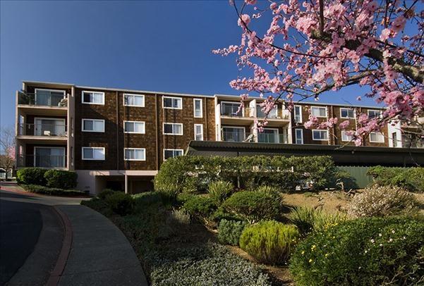 Apartments Near Sausalito Ca