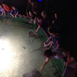 parc attraction zeeland