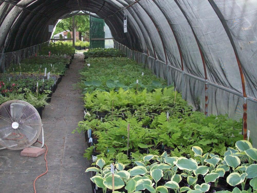 Hartke Nursery: 1030 N Warson Rd, Saint Louis, MO