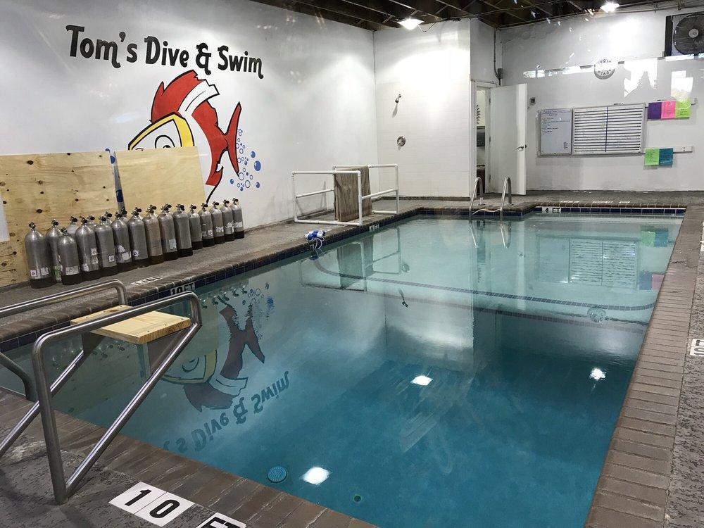 Toms Dive Swim 40 Reviews Diving 5909 Burnet Rd Allandale