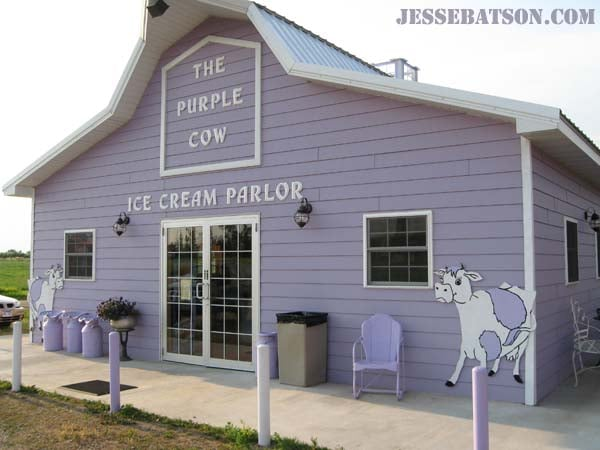 Purple Cow: 30 E Highway 12, Waubay, SD