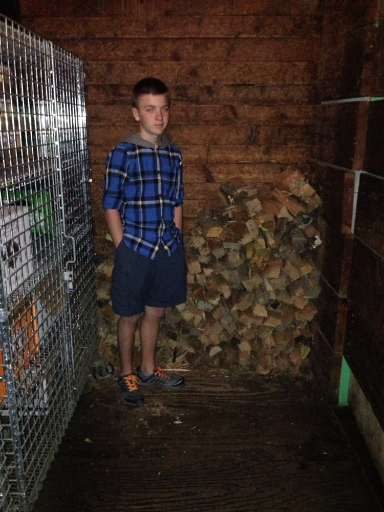 Photo of Comet Ping Pong - Washington, DC, United States. Wood for oven stacked near kitchen.