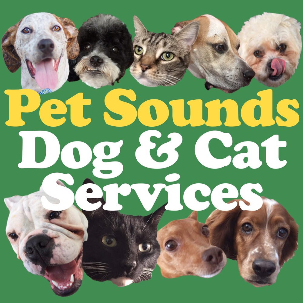 Pet Sounds DC: 2407 North Capitol St NE, Washington, DC, DC