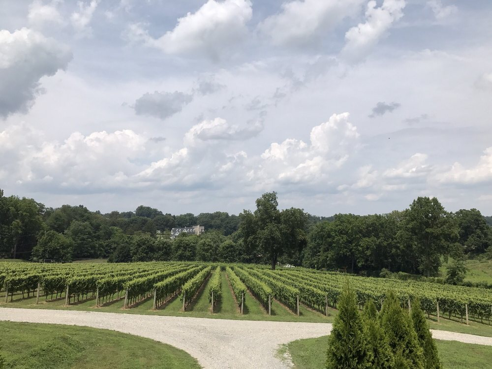 Galer Estate Vineyard & Winery