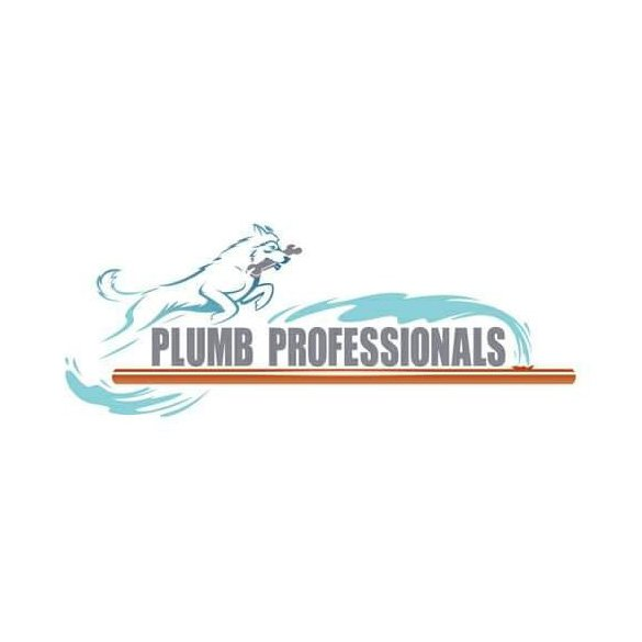 Plumb Professionals: 44046 Gala Cir, Ashburn, VA
