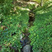 photo of quarryhill botanical garden glen ellen ca united states meandering stream - Quarryhill Botanical Garden
