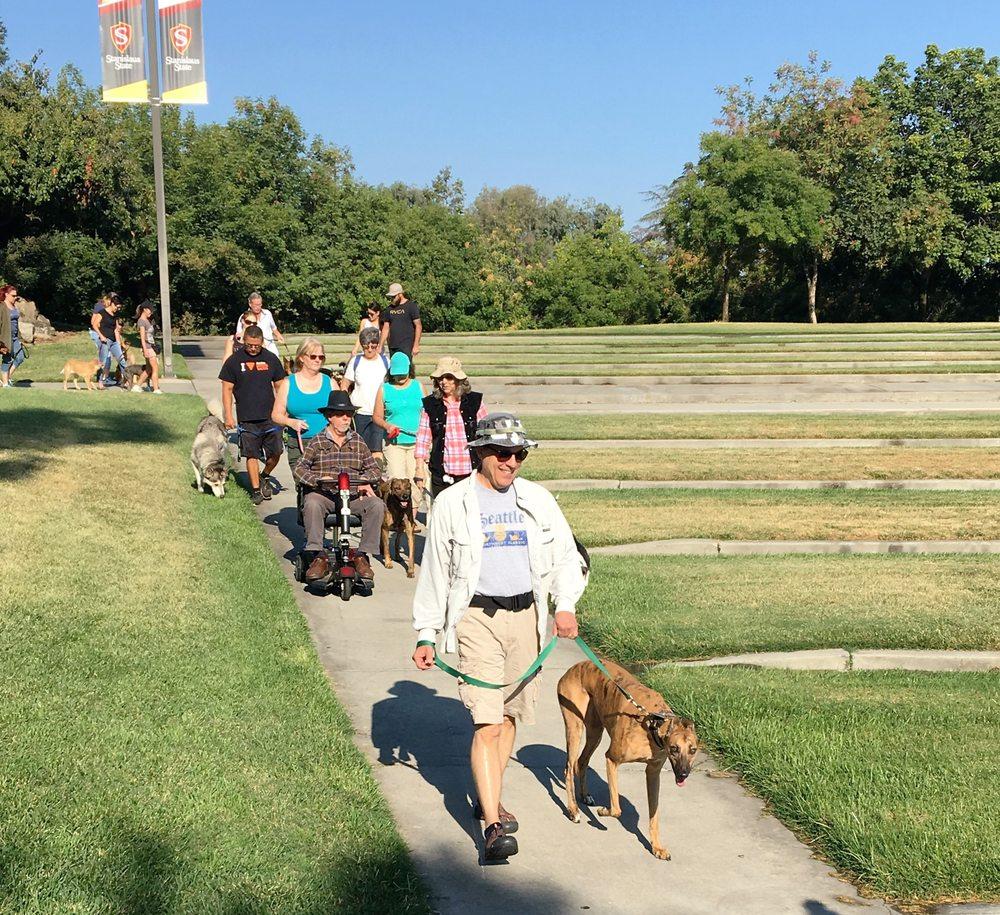 A Dog Training Turlock Ca