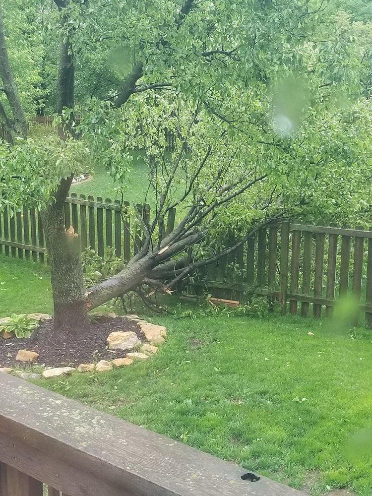 Peralta Tree Service And Landscaping: 4421 Garfield Ave, Kansas City, KS