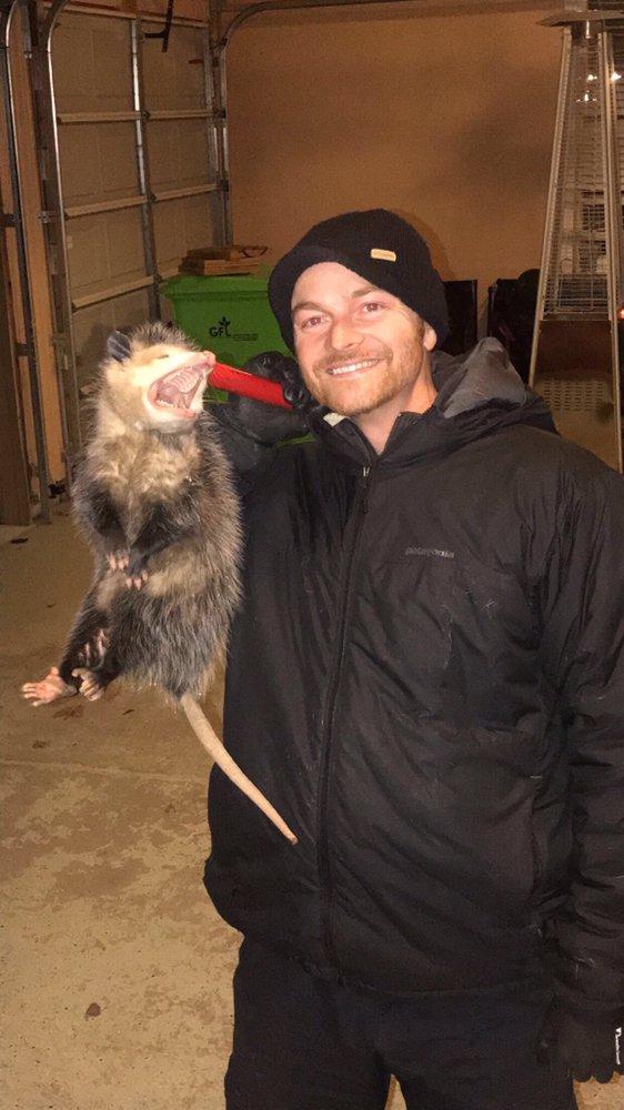 ACT Live Trapping: 596 Brooks, Pontiac, MI