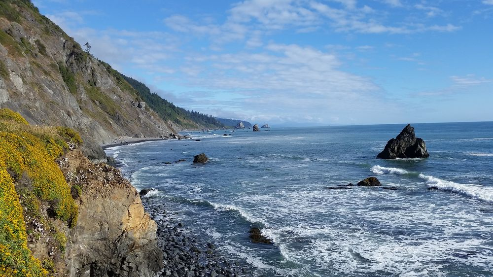 Damnation Creek Trail: US Hwy 101, Crescent City, CA
