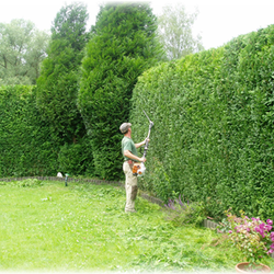 Gartengestaltung Dresden, gartengestaltung latschan - gardeners - lohmar, nordrhein-westfalen, Design ideen