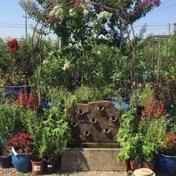 wyntour gardens 33 photos 13 reviews nurseries gardening 8026 airport rd redding ca