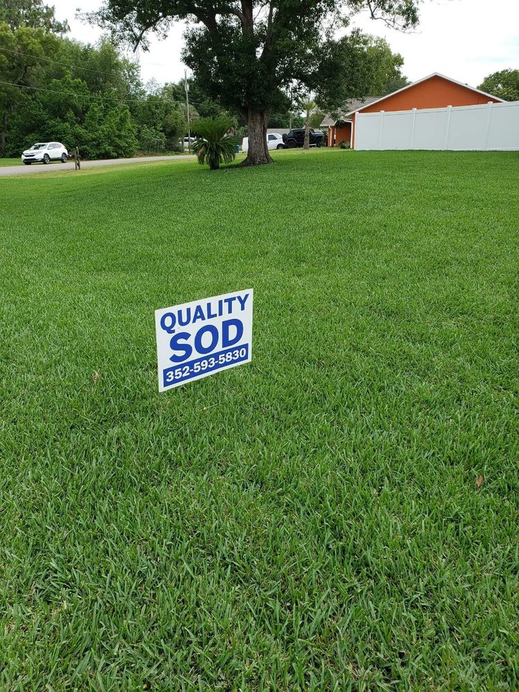 Quality Sod & Landscape Solutions: 18402 US Hwy 41, Spring Hill, FL