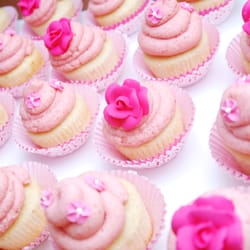 THE BEST 10 Cupcakes In Saint Louis MO