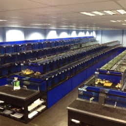 Photo Of Aquascape Fish Imports Ltd   Sutton Coldfield, West Midlands,  United Kingdom.
