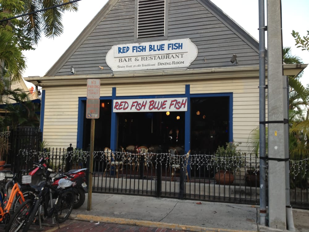 Photos for red fish blue fish yelp for Red fish blue fish key west