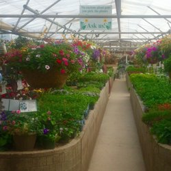 Photo Of Plantorium Greenhouse Fort Collins Co United States Several Greenhouses With
