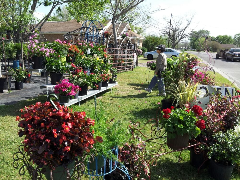 Ashe Nursery Imports & More: 908-1174 W Washington Ave, Navasota, TX