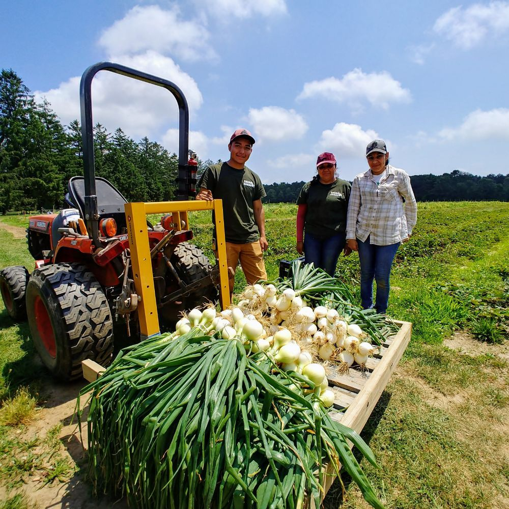 Thera Farms: 1705 Brentwood Rd, Brentwood, NY