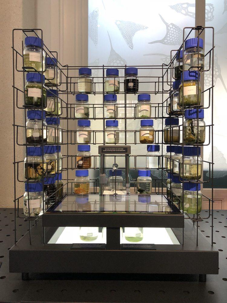 Micropia: Plantage Kerklaan 38-40, Amsterdam, NH