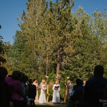 Tahoe Tree Company - 19 Photos - Nurseries & Gardening ...