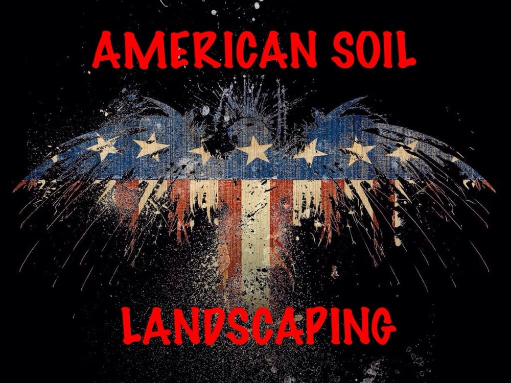 American soil landscaping tree removal tree surgeons for American soil