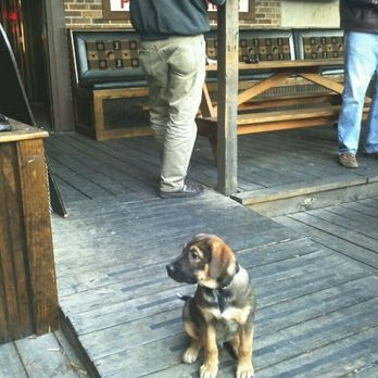 Photo Of The Local Pub And Patio   Austin, TX, United States. I