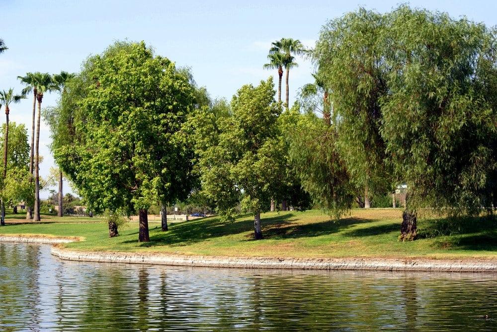 Photos For Freestone Park Yelp