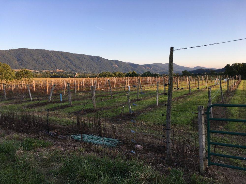 West-Whitehill Winery: 4484 US 220 S, Moorefield, WV