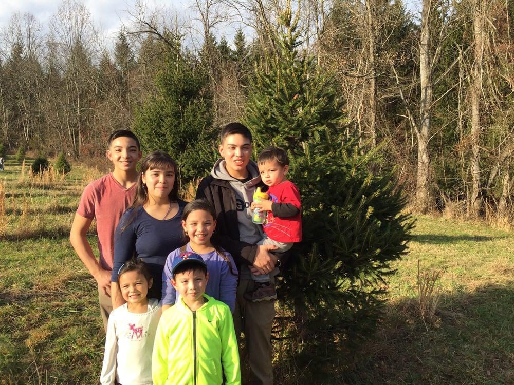 Middleburg Christmas Tree Farm