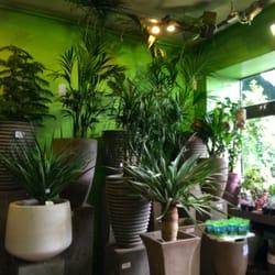 Casanova tr dg rdsbutiker plantskolor 10 quai de la for Catalogue de jardinerie
