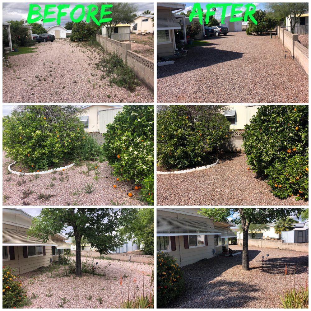 Montoya's Landscaping: 210 W 18th Ave, Apache Junction, AZ